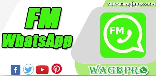 fm whatsapp business