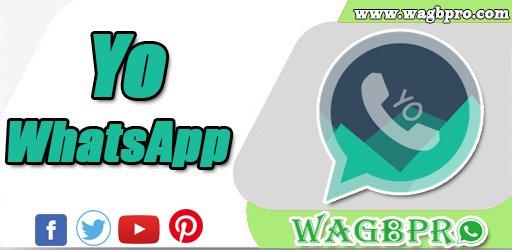 yowhatsapp download